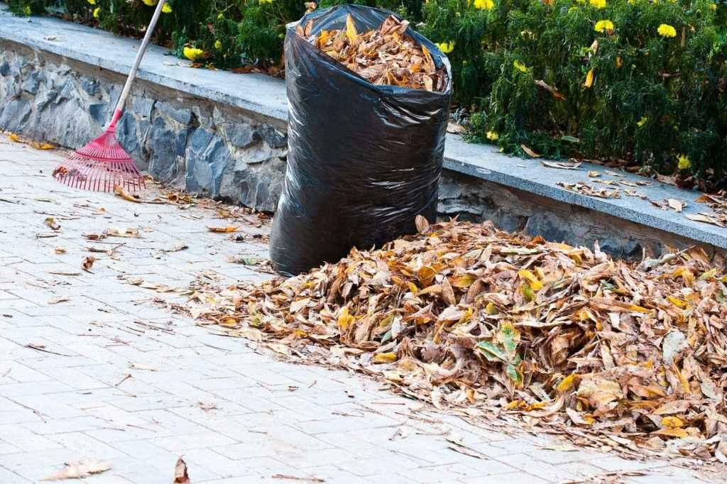 PDX Yard Cleaners - Debris Removal 1