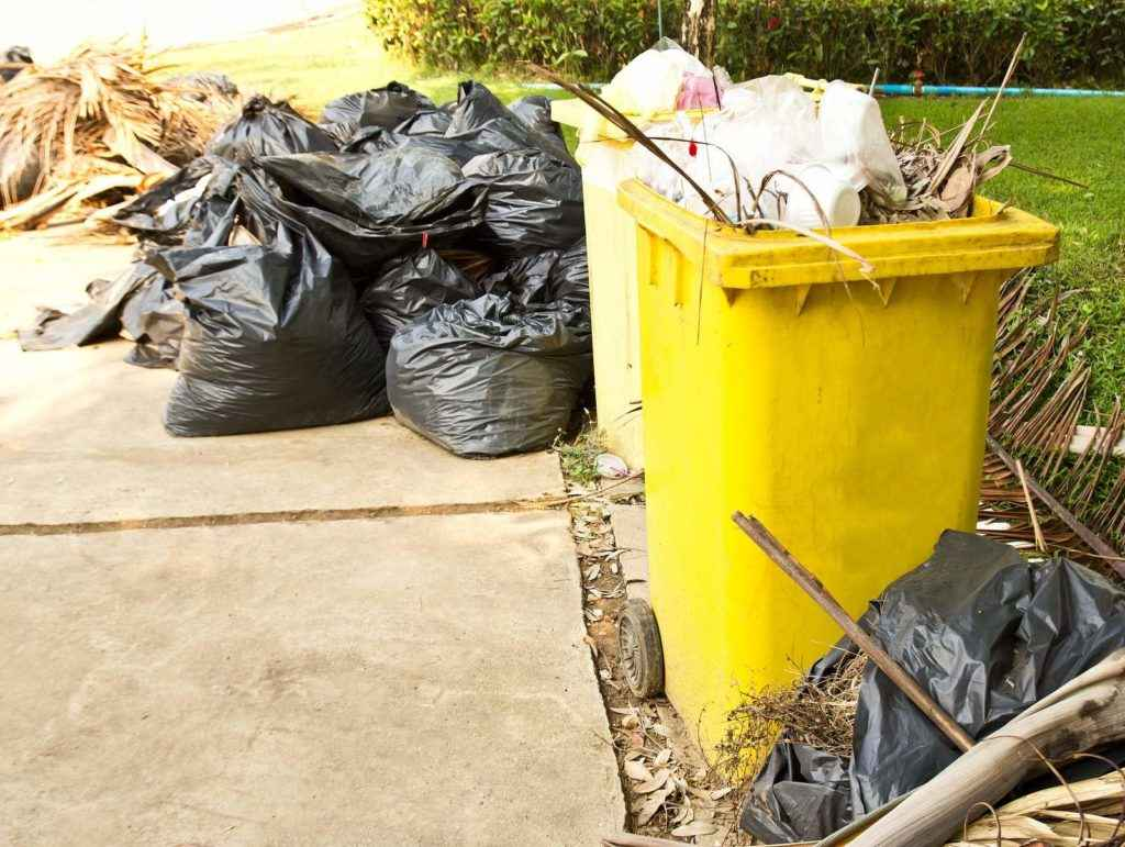 PDX Yard Cleaners - Spring Clean-up 1